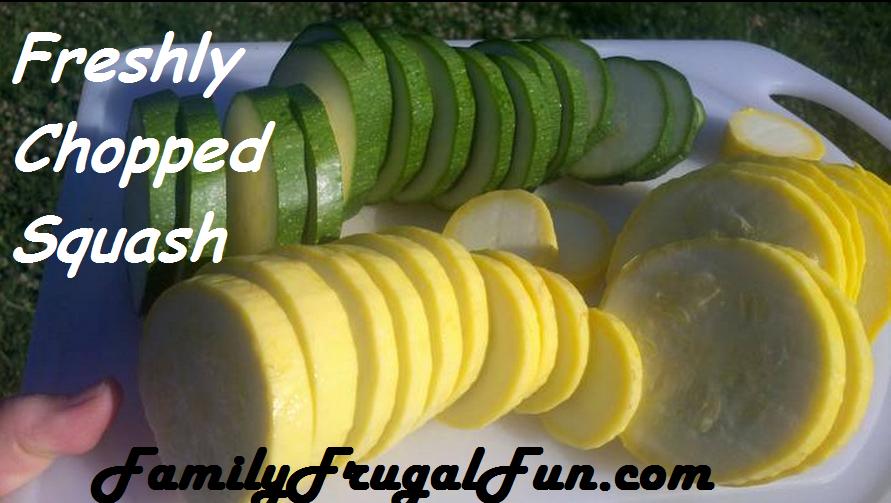 Squash image Summer Squash Pie Recipe