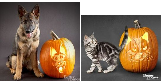 Halloween Pumpkin Patterns: FREE Dog Pumpkin Carving Stencils, FREE ...