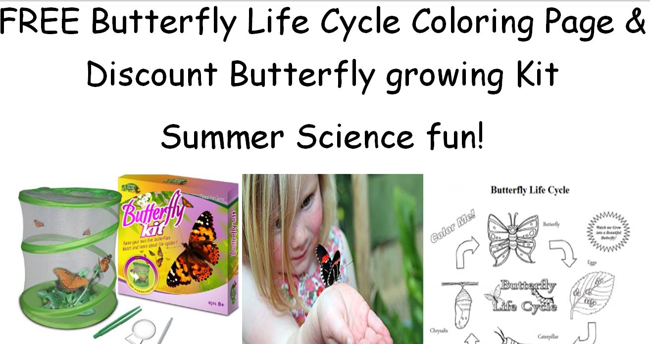 FREE Butterfly Life Cycle Coloring Page And Discount Growing Kit