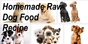 Homemade Raw dog food recipe