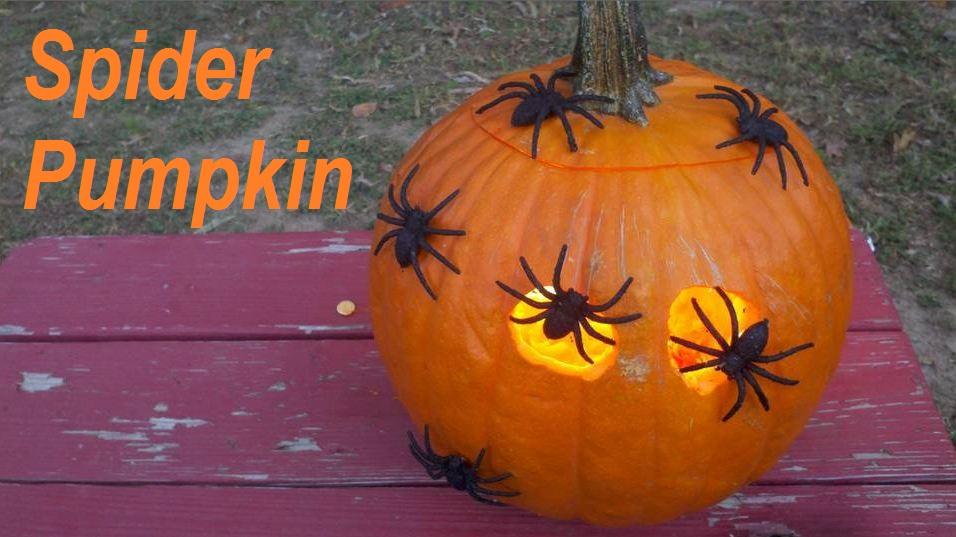 Jack O Lantern Ideas Pumpkin Decorating Ideas Family