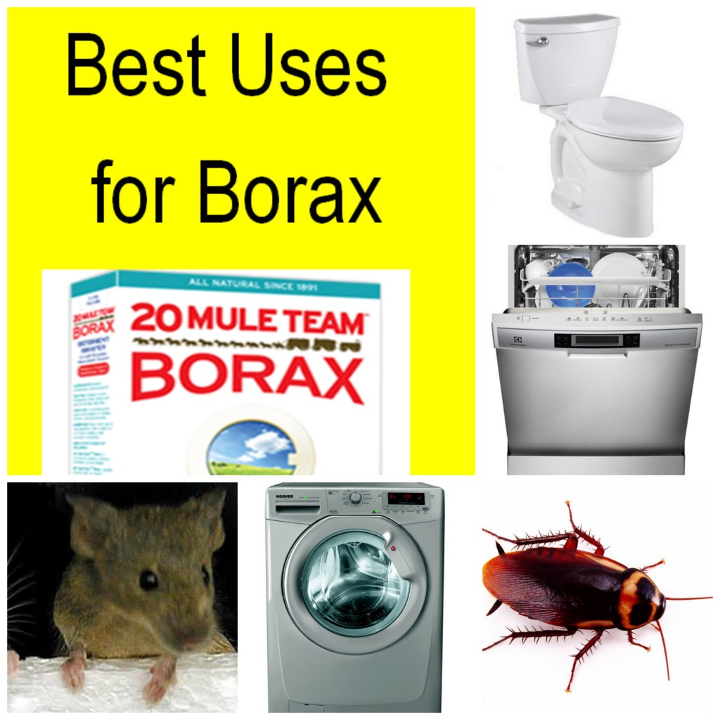 20 Best Uses for Borax
