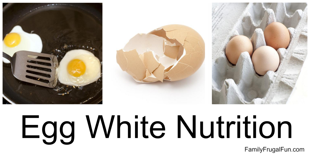 Egg White Nutrition