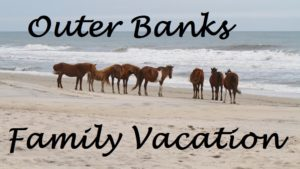 Outer Banks Travel (2)