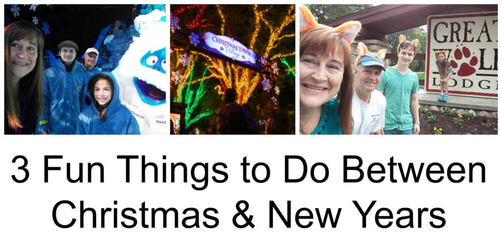 Fun Things to Do Between Christmas & New Years